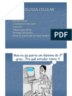 Power Point Citologia