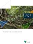 RSE - Reporte de Sustentabilidad de VALE 2010 Brasil
