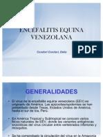 ENCEFALITIS EQUINA VENEZOLANA 1
