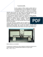 FLEXION DOCUMENTO