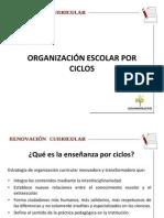 Organizacion Escolar Por Ciclos-8-Octubre
