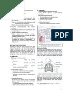 1ª_Fisiopatologia_Repiratoria