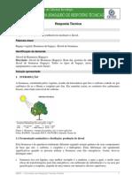 Química - Álcool da Biomassa - Resposta Técnica.