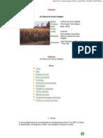 Arroz Irrigado Epamig Legal