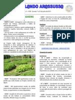 Informativo Circulando Arassussa - Ano 4 - nº 98