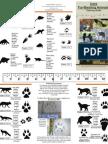 Fur Bearing Animal Brochure