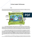 Plant Cell and Animal Cell Structure