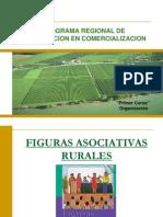 01-03--figuras-asociativas-rurales