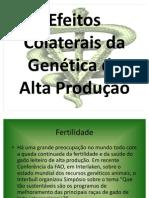 Efeitos Colaterais da Genética de Alta Produção