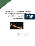 Uso de microorganismos fijadores de nitrógeno gaseoso simbiontes en cultivos vegetales y su productividad