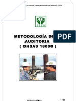 Manual Auditor Ohsas
