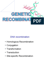 17. Genetic Re Combination