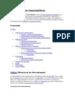 Determinantes(Algebra Lineal)