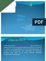 Fecundacion in Vitro (Fvi)