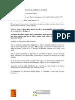 Manual de Globoflexia