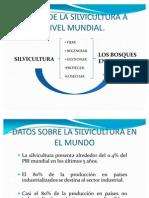 Silvicultura Mundo - America Latina - Colombia
