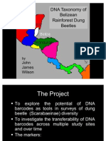 Measuring effect of forest disturbance on the diversity of belizean dung beetles (Scarabaeinae) using DNA barcodes