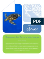 The Odyssey of Sea Turtles in NC