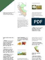 Triptico Las Regiones naturales del Perú y sus recursos - Luz Angelica Villanueva Escalante