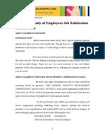 Employee Job Satisfaction