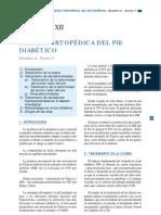 CAPÍTULO XII Cirugia ortopedica del pD