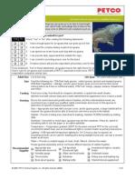 PetCo Iguana Care Sheet