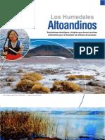 humedales_altoandinos