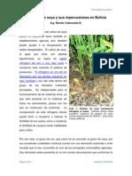 Cultivo Report