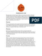 Pomegranate Information