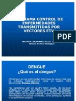 Dengue Todo Lo Que Hay Que Saber Del Dengue