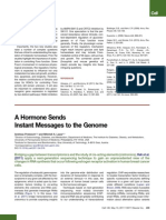 A Hormon Sends Instant Segnals