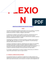 Flex Ion