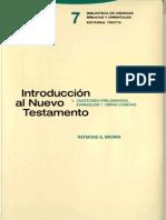 Brown, Raymond e - Introduccion Al Nuevo Test Amen To 01