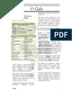 Jornal O Galo - 6ª Edição
