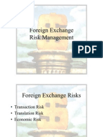 PPT Foreign Exchange Risks Explained