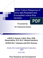 Anther culture Rice final