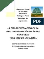 Fitorremediacion en La Descontaminacion de Areas Agricolas