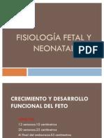 Fisiología fetal y neonatal, lab de fisiologia