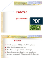 Poaceae 2011