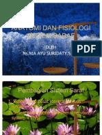 Anatomi Dan Fisiologi Sistem Persyarafan