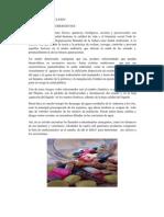 FyF CLXXIV Contaminantes Emergentes