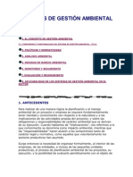 Documento Sistemas de Gestion Ambiental