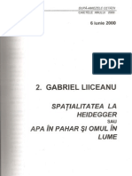Spatial It a Tea La Heidegger-Apa in Pahar Si Omul in Lume-Conferinta-G.-liiceanu