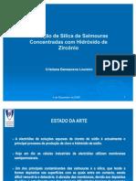 Apresentação C Loureiro3