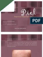 pielmorfologa-100613101821-phpapp02