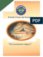 Eclodindo Cistos de Artemia