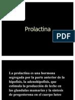 Pro Lac Tin A