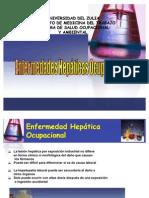 Tema 20 Toxicidad Hepatica