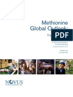 Methionine Global Outlook