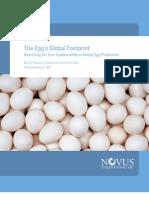 The Egg's Global Footprint